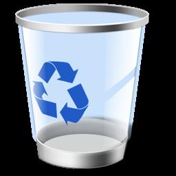 Папка RECYCLER или $Recycle.Bin
